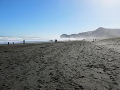 Piha Beach, West of Auckland. Us Images, Auckland, New Zealand, Places To Visit, Explore, Gallery, Beach, Water, Outdoor