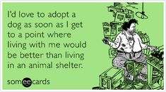 Free and Funny Cry For Help Ecard: I'd love to adopt a dog as soon as I get to a point where living with me would be better than living in an animal shelter. Create and send your own custom Cry For Help ecard. Shelter Dogs, Animal Shelter, Rescue Dogs, Puppy Meme, Dog Memes, Dog Humor, I Like Dogs, Workout Memes, Sarcasm Humor