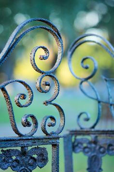 hueandeyephotography:  Old Weathered Gate Magnolia Cemetery Charleston SC   Doug Hickok All Rights Reserved  More here