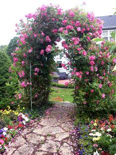 Perennial Flower Garden Design | Heartland Turf - Madison, Wisconsin - Perennial Gardens
