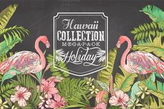 Hawaii collection Mega Pack & logos by Graphic Box on Creative Market