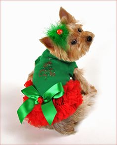 Merry Christina Ruffled Christmas Dog Dress! Available at http://doggyinwonderland.com/item_2109/Merry-Christina-Ruffled-Christmas-Dog-Dress.htm