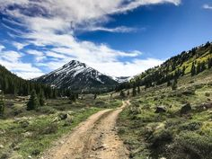 Your guide to the best free camping near Denver, Colorado. Find epically beautiful hidden campsites right near Denver with this in-depth guide. Go Camping, Camping Hacks, Cold Springs Campground, Us Park, Colorado Trail, Best Campgrounds, Continental Divide, Forest Road, Rocky Mountain National Park