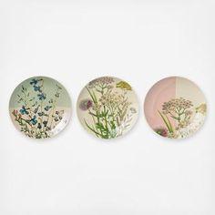 Botanic Plate, Set of 3
