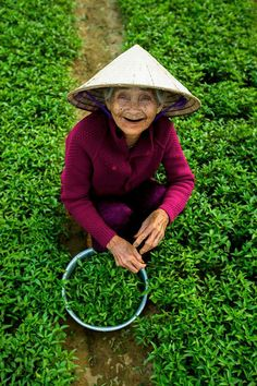 Vietnam - Photography by Réhahn
