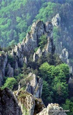 Instructive path Súľovské skaly - Súľovské vrchy - Slovakia.travel