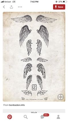 369ed199e0dd8 19 best Small Wings Tattoo Designs images | Wing tattoo designs ...