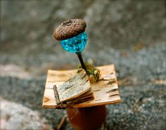 Twig and Toadstool ~ lovely tour through an amazing fairy garden! I