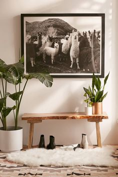 Shop Victoria Aguirre Llamas Family Art Print at Urban Outfitters today. We carry all the latest styles, colors and brands for you to choose from right here. Decoration Hall, Entryway Decor, Home Design, Home Interior Design, Kitchen Interior, Design Design, Modern Design, Design Ideas, Photo Deco