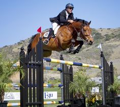 Peter Breakwell and Lucas Claim Victory in the $40,000 Blenheim Spring Classic I Grand Prix | ProEquest