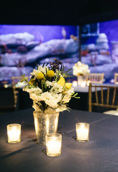 Andrea & Avery's wedding at the South Carolina Aquarium. Photography by Riverland Studios