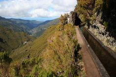 Railroad Tracks, Need To Know, Trip Advisor, Attraction, Photos, Madeira, Pictures
