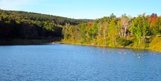Changing leaves by the lake @skigreekpeak in New York State