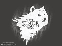 So Games Much Thrones Wow T-Shirt From Woot | TEECRAZE