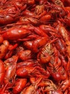 Crawfish boils aren't just a chance to eat delicious Cajun food, but are a way of life in New Orleans; try this recipe from master chef Donald Link. Louisiana Recipes, Cajun Recipes, Cajun Food, Crawfish Bread, New Orleans Recipes, Barbecue Pit, Muffin Bread, White Bread, Bread Rolls