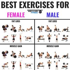8 Most Effective Exercises For Fat Loss (and Muscle Gains!) 8 Most Effective Exercises For Fat Loss (and Muscle Gains! Fitness Workouts, Weight Training Workouts, Weight Loss Workout Plan, Weight Loss Plans, At Home Workouts, Exercise Workouts, Fitness Diet, Workouts To Gain Weight, Workout For Fat Loss