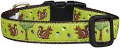 Up Country Nuts Dog Collar ** New and awesome dog product awaits you, Read it now  : Collars for dogs