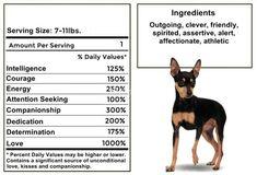 Figure out additional information on Minpin. Take a look at our web site. Cheap Dog Food, Dog Breeds Pictures, High Quality Dog Food, Doberman Pinscher Dog, Photo Mug, Dog Bones, Miniature Pinscher, Assertiveness, Pet Dogs