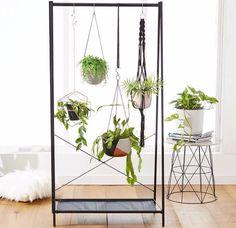 Garment rack plants!