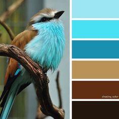 Color Beige MyGarden Zanzibar Balanc/ín