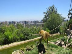 Santiago (Chile) Outdoor Furniture, Outdoor Decor, Hammock, Chile, Horses, Animals, Saint James, Pictures, Animales