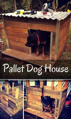 Rustic Pallet Dog House | 101 Pallet Ideas More