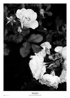 00106a60b19 En gâng vacker alltid vacker. FOTOGRAF   KONSTNÄR  Victoria Khatib