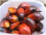 Dendém - palm oil is extracted from this fruit.