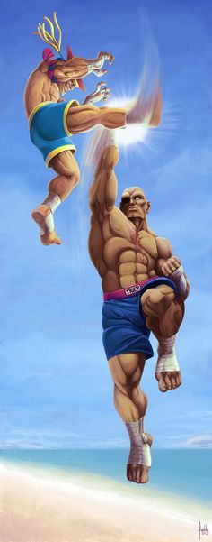 Adon vs sagat sf 25an tribute by fedde on deviantart