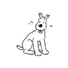 Tintin's Snowy behind ear