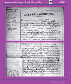 Acta de nacimiento del pintor Pablo Ruíz Picasso. Fot. Asoc. de Investigadores de los Archivos de Málaga.