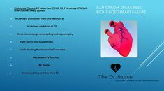 Pathopedia: Including the patho of the disease, the signs/ symptoms you will see and the priority interventions. Right Sided Heart Failure, Student Info, School Info, Education Degree, Cardiology, Nurse Practitioner, Sleep Apnea, Study Materials, Nursing Students