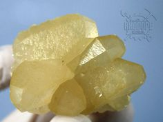 Yellow Golden Calcite Bulgarian Calcite Golden by RhodopeMinerals