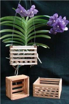 Wood Orchid Vanda Basket with Wire Hanger