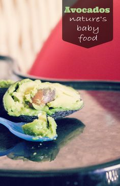 Avocados: Nature's Baby Food
