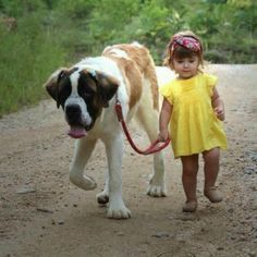 The dog even bigger than the kid!!