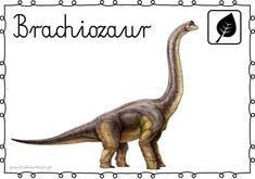 DINOZAURY – plansze – Przedszkolankowo Play Based Learning, Project Based Learning, Family Day Care, Shape Templates, Dinosaur Art, School Play, Prehistoric Creatures, Forest School, Teaching Kindergarten