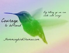 hummingbird meaning - Google Search