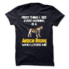 I See American Bulldog Every Morning