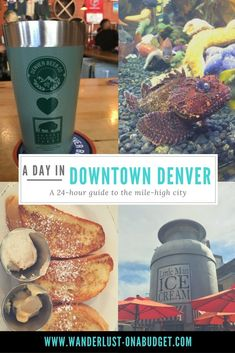 A Day in Downtown Denver - things to do in Denver - downtown aquarium, Denver Beer Company, Little Man Ice Cream - Wanderlust on a Budget Denver Colorado, Colorado Springs, Denver Usa, Visit Denver, Road Trip To Colorado, Colorado Winter, Visit Colorado, Us Road Trip, Weekend In Denver