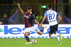 Adam Masina of Bologna FC in action during the Serie A match between Bologna FC and FC Internazionale at Stadio Renato Dall'Ara on September 19, 2017 in Bologna, Italy.