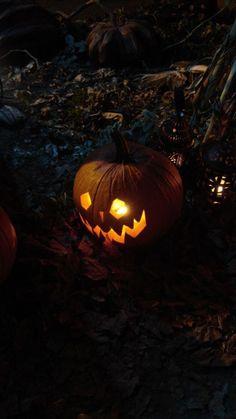 Halloween Eve, Halloween Artwork, Halloween Season, Holidays Halloween, Halloween Pumpkins, Happy Halloween, Samhain, Vintage Halloween Images, Apple Watch Wallpaper