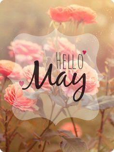 I've always said...even if May wasn't my birth month, along with June, it'd still be one of my fave months of the year ❤ - jade