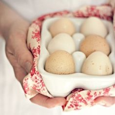Fresh eggs | Red country kitchen