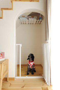 【アイジースタイルハウス】ペット。階段下はワンちゃんのお部屋☆
