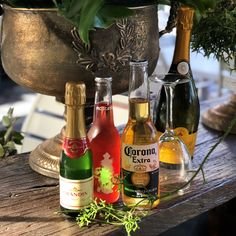 Enjoy a glass of wine or beer with your lunch. Poppy's Verandah Cafe is licensed with wine and beer available from Veranda Cafe, Landscaping Supplies, Wine And Beer, Newcastle, Garden Plants, Landscape Design, Poppy, Alcoholic Drinks, Planters