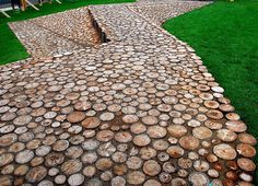 tree stump path, via sabbespot.blogspot.com