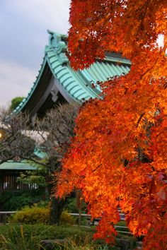 Hasedera Temple. Kamakura. Japan