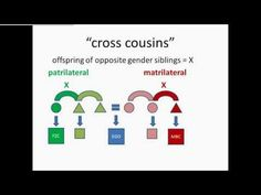 Eskimo Kinship Diagram  Anthropology