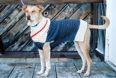 This free, easy crochet dog sweater pattern fits very small, medium and large dogs and is perfect for winter! Easy pattern appropriate for beginners in sizes - Crochet and Knit Very Large Dog Breeds, Large Dogs, Small Dogs, Crochet Dog Sweater Free Pattern, Crochet Patterns, Crochet Ideas, Sweater Patterns, Crochet Sweaters, Crochet Cardigan
